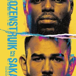 UFC Fight Night: Rozenstruik vs. Sakai Recap