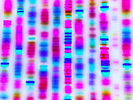 The Tardiness Gene