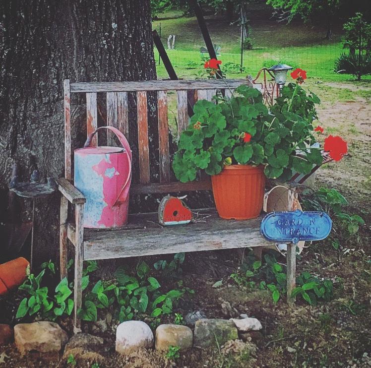 Aunt Jana's Bench