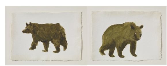 Holly Frean, Brown Bear