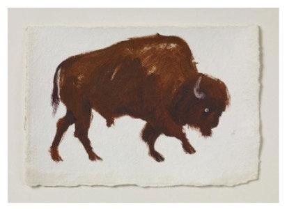 Holly Frean, Bison