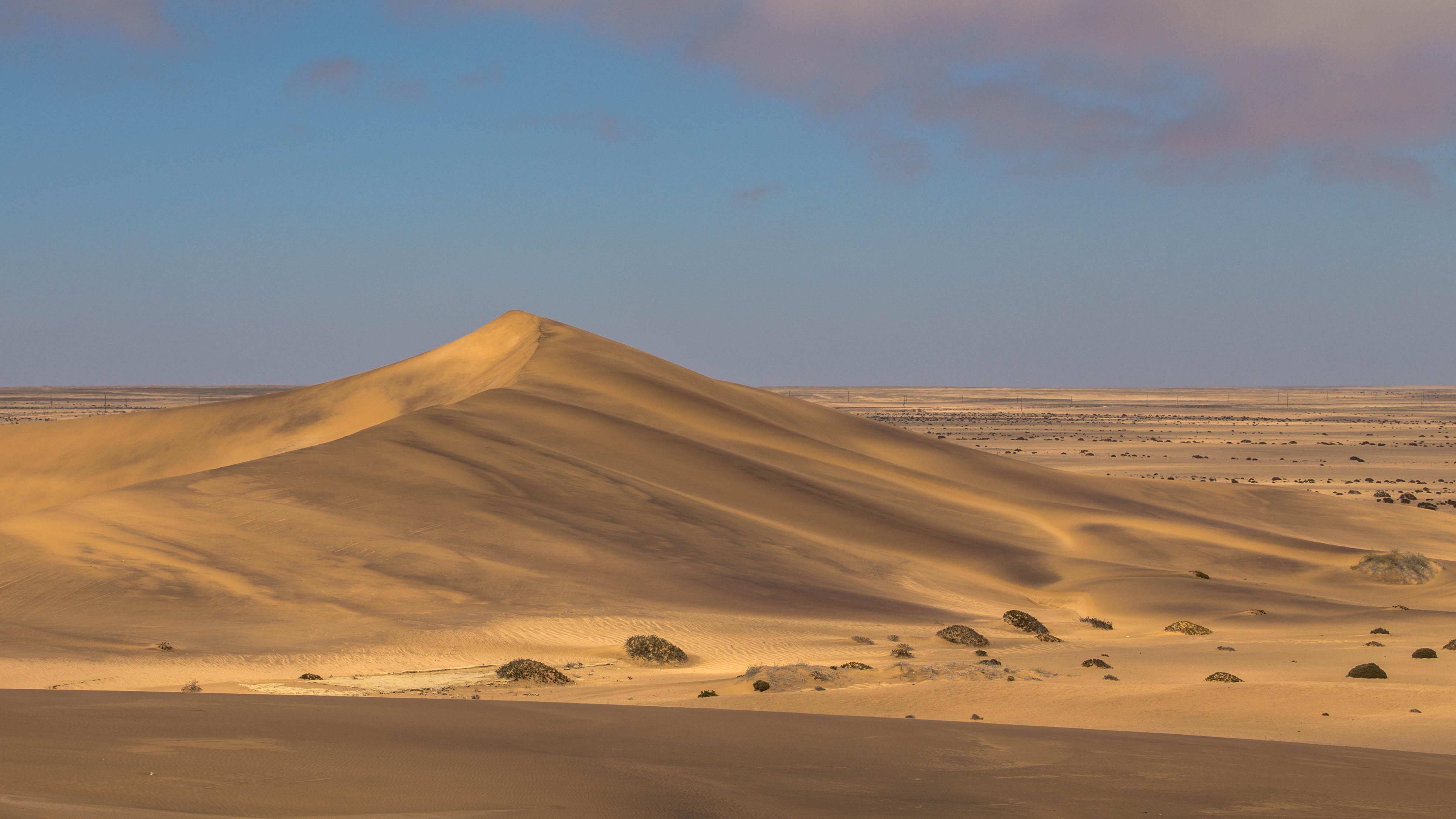 Die weiße Namib