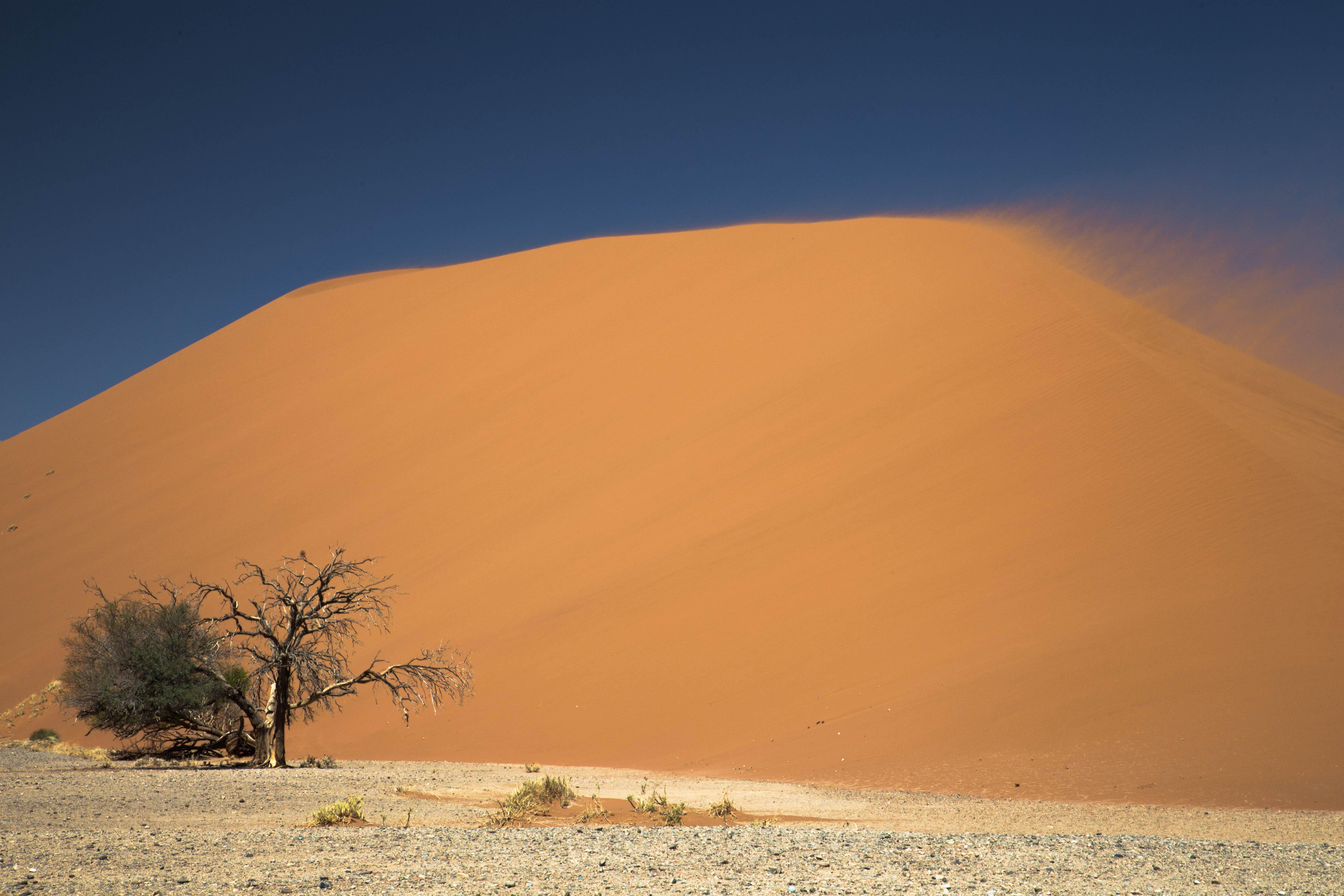 Sturm über der Wüste