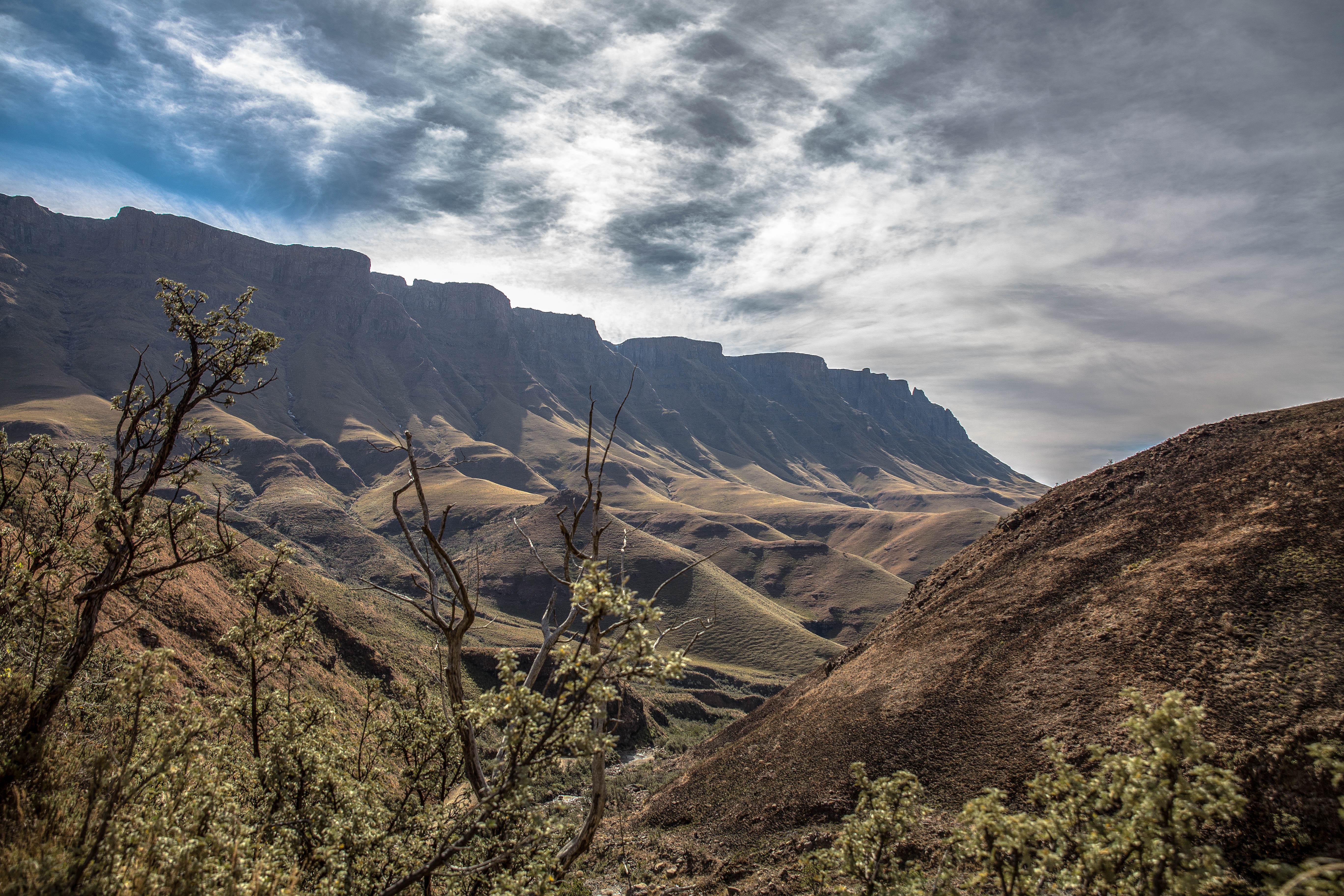 Wunderbare Drakensbege