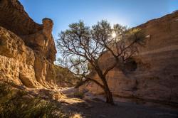 Im Sesriem Canyon 2