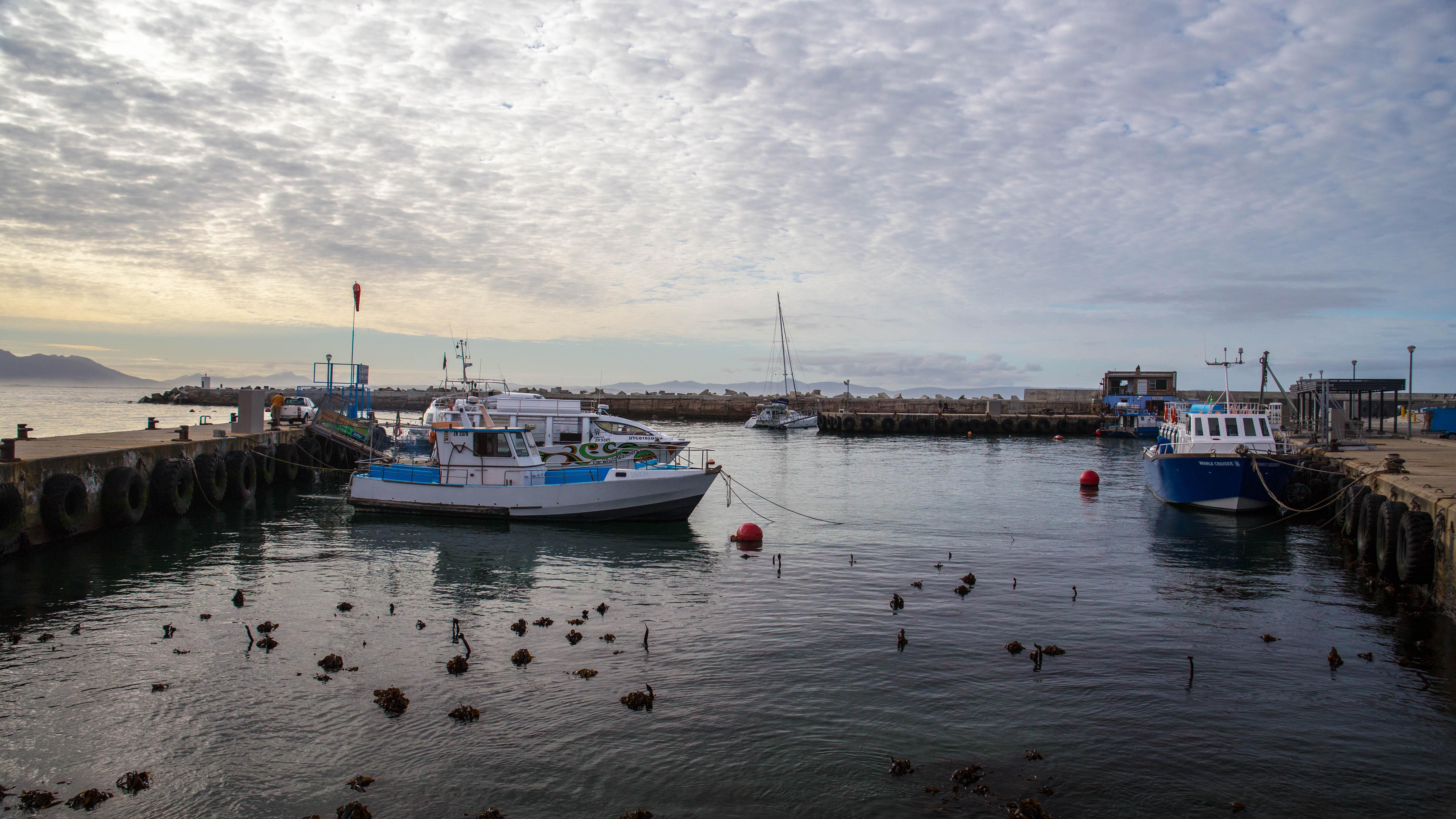 Hafen Hermanns