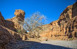 Im Sesriem Canyon 1