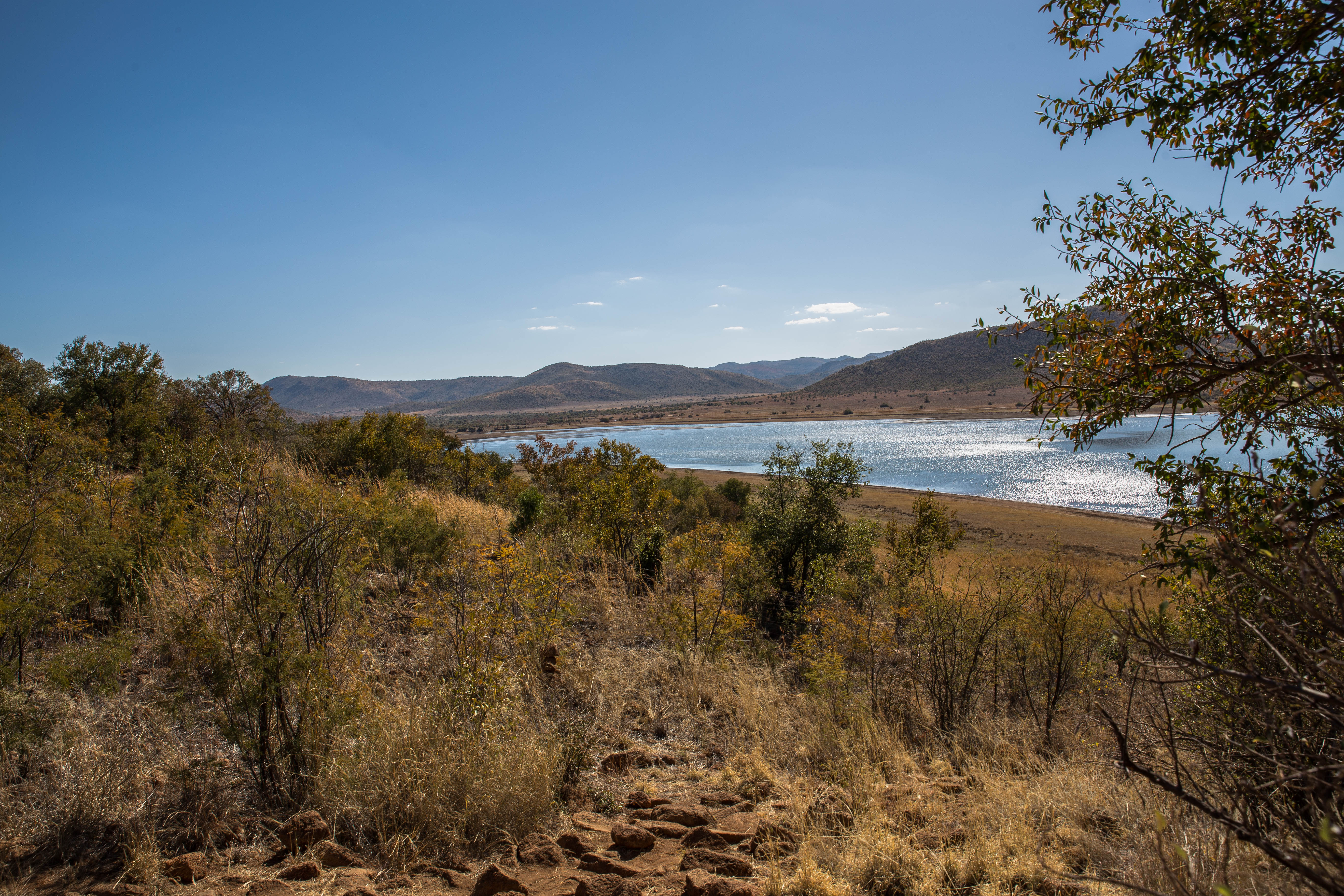 Im Pilanesberg NP