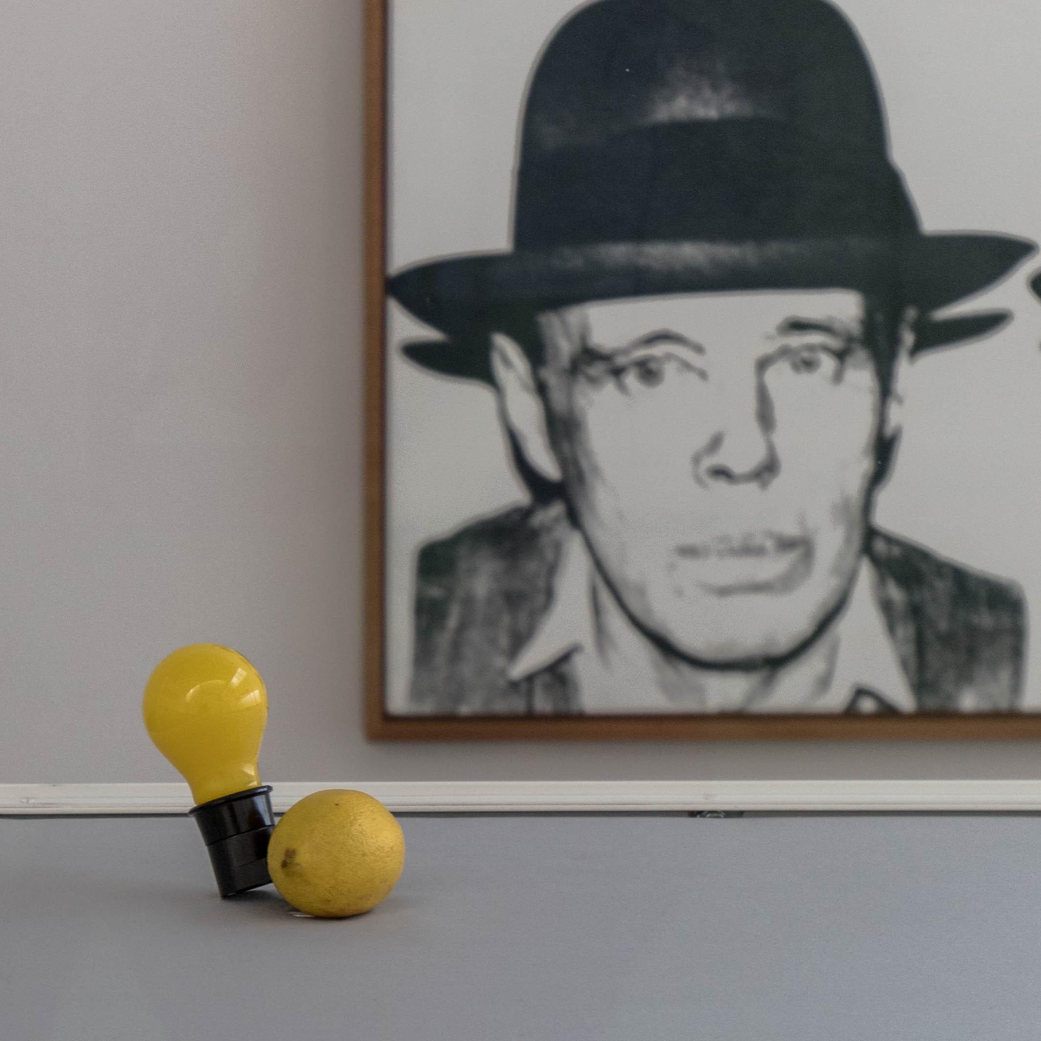 Beuys - Die Capri-Batterie