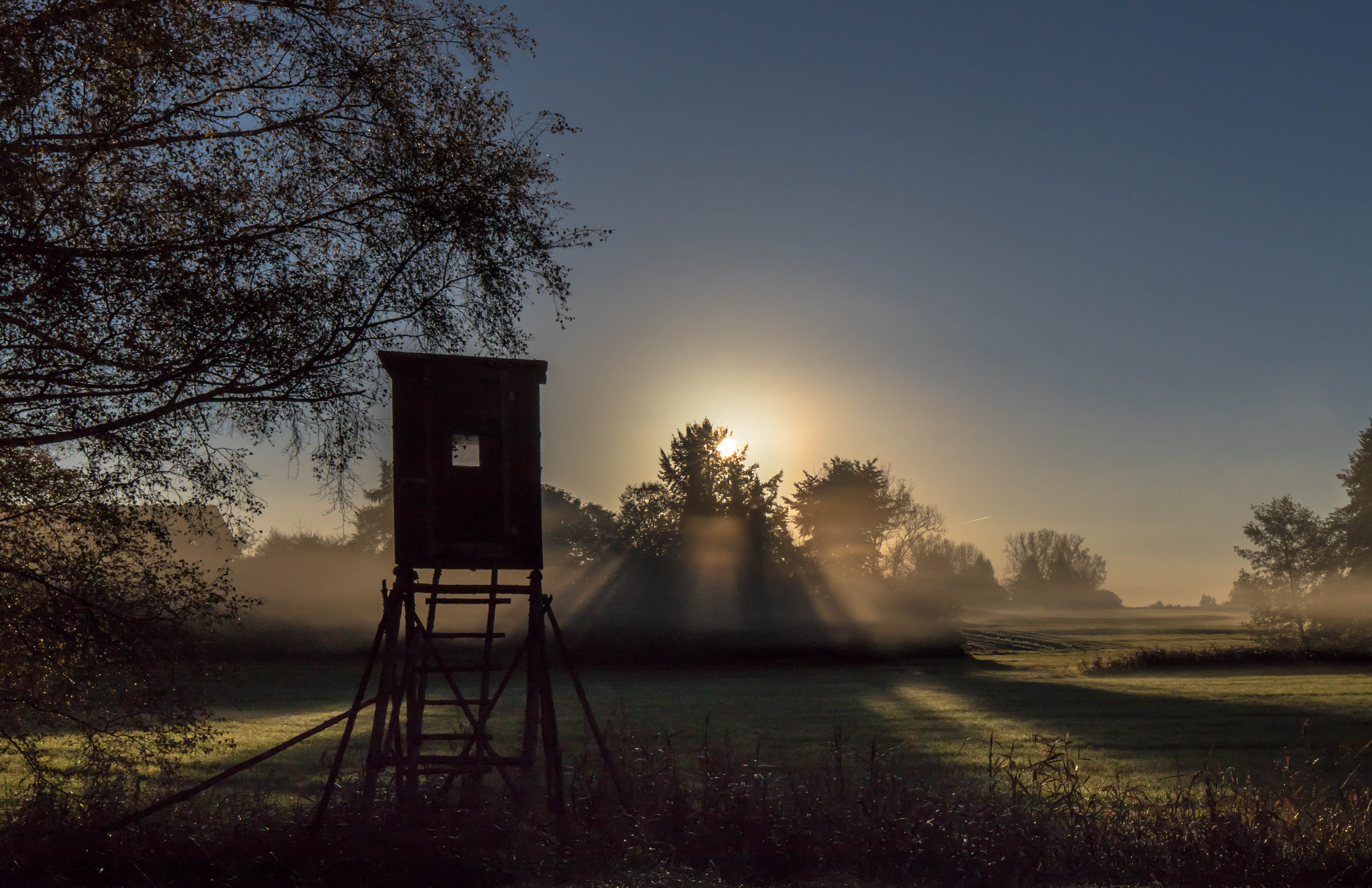 Faszination Morgenlicht
