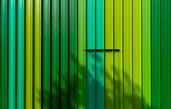Grün gestreift