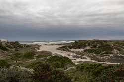 West Coast NP bei Paternoster