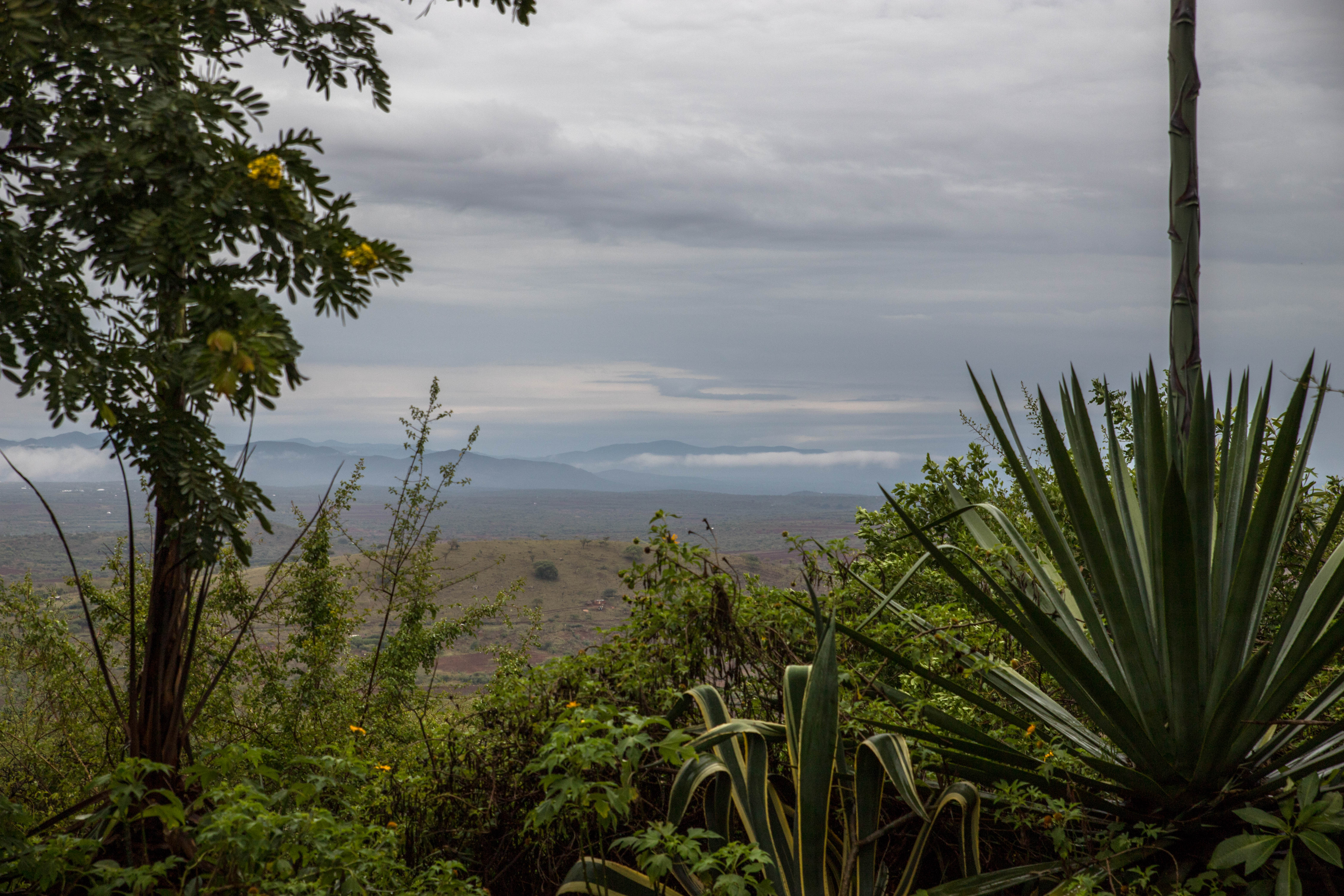 Lake Manyara Region