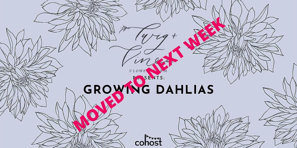 rescheduled! Growing Dahlias