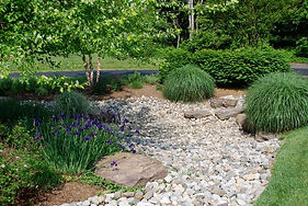 Rain Gardens Hold-and-Slow Stormwater, Reducing Run-Off and Erosion