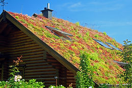 Green Roofs Help to Insulate the Home, Reduce Rainwater Run-Off, and Add Beatiful Green Space Amenity.