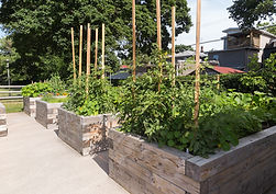 Urban Farmscapes Can be Customized to Almost Any Living Arrangement, Allowing Organic Food Production At Home.