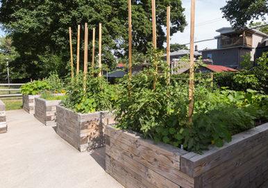 Urban Farmscapes