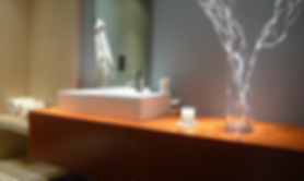 Sustainable-Luxury Bathroom Design, The Palmer Design Group, Inc., Los Angeles