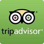 TripAdvisor-Icon.jpg