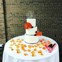 Coral & Grey Wedding Cake from this week