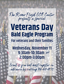 Veterans Day Program 2020.png