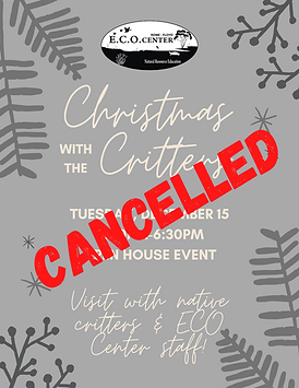 Cancelled CWTC.png