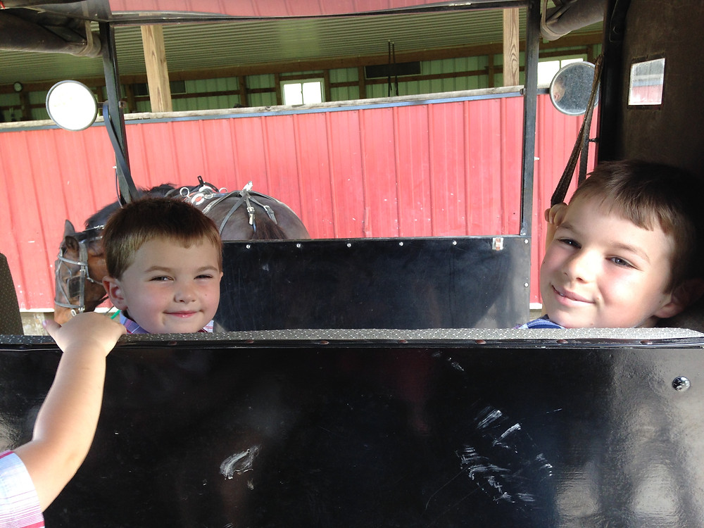 Boys in amish buggy