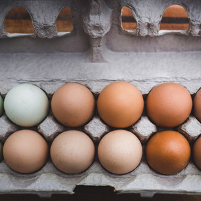 As Sure As Eggs Is Eggs
