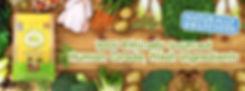 Beco Pets FB banner.jpg