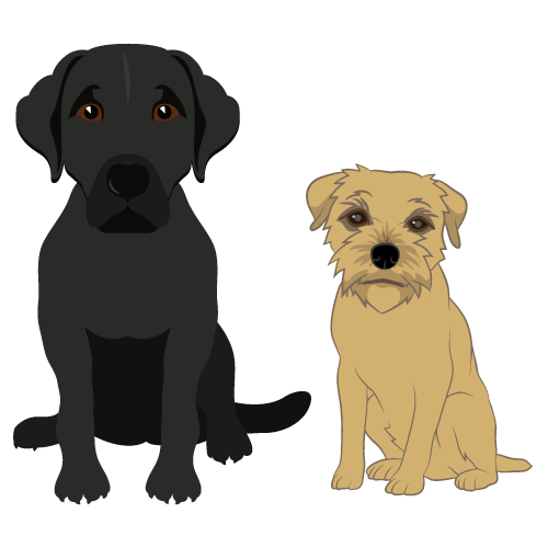 Cartoon of two cute dogs by Mat Jolly of Jolly Good Design in Cheltenham, Gloucestershire. Member of Cheltenham Lifestyle & Business online directory.