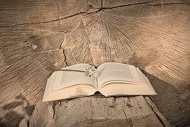 book-5130712_1280_edited.jpg