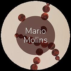 Mario Molins.png
