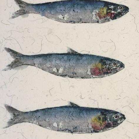 Sardines - Gyotaku print
