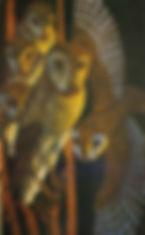 James T. A. Osborne - Barn Owls