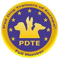 pdte logo.jpg