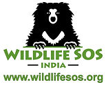 WSOS green Logo (outline)_edited.jpg