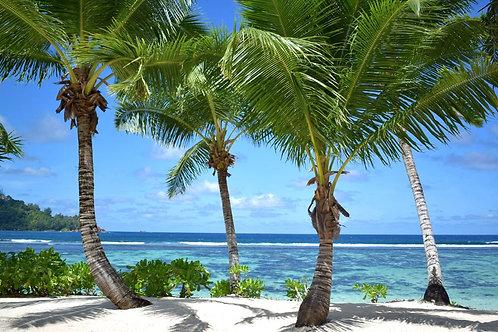 Seychelles-Kempinski 5* (Bucuresti)
