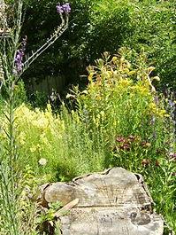 Garten 5.jpg
