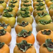 Persimmon Harvest.JPG