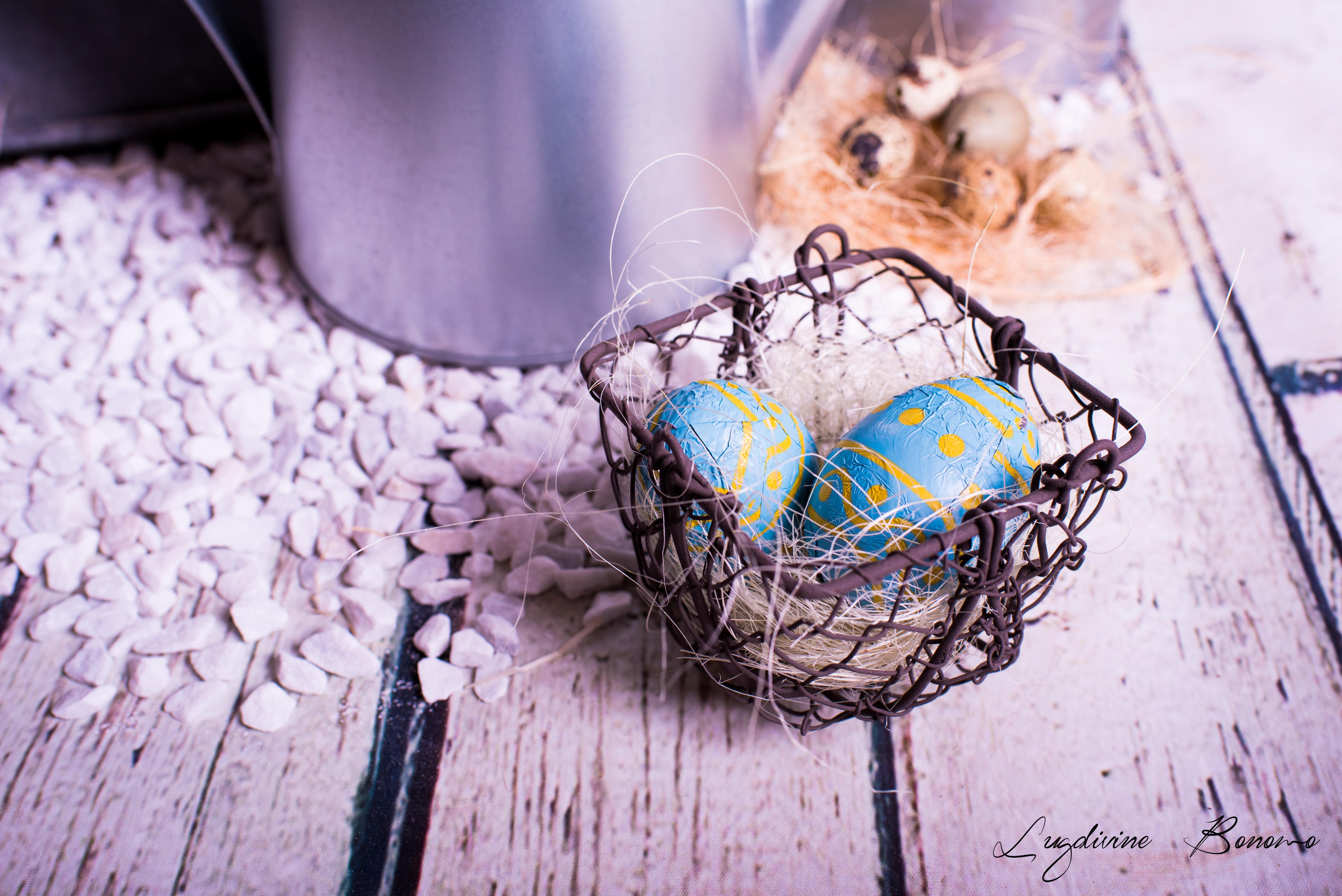 photo enfant printemps Istres