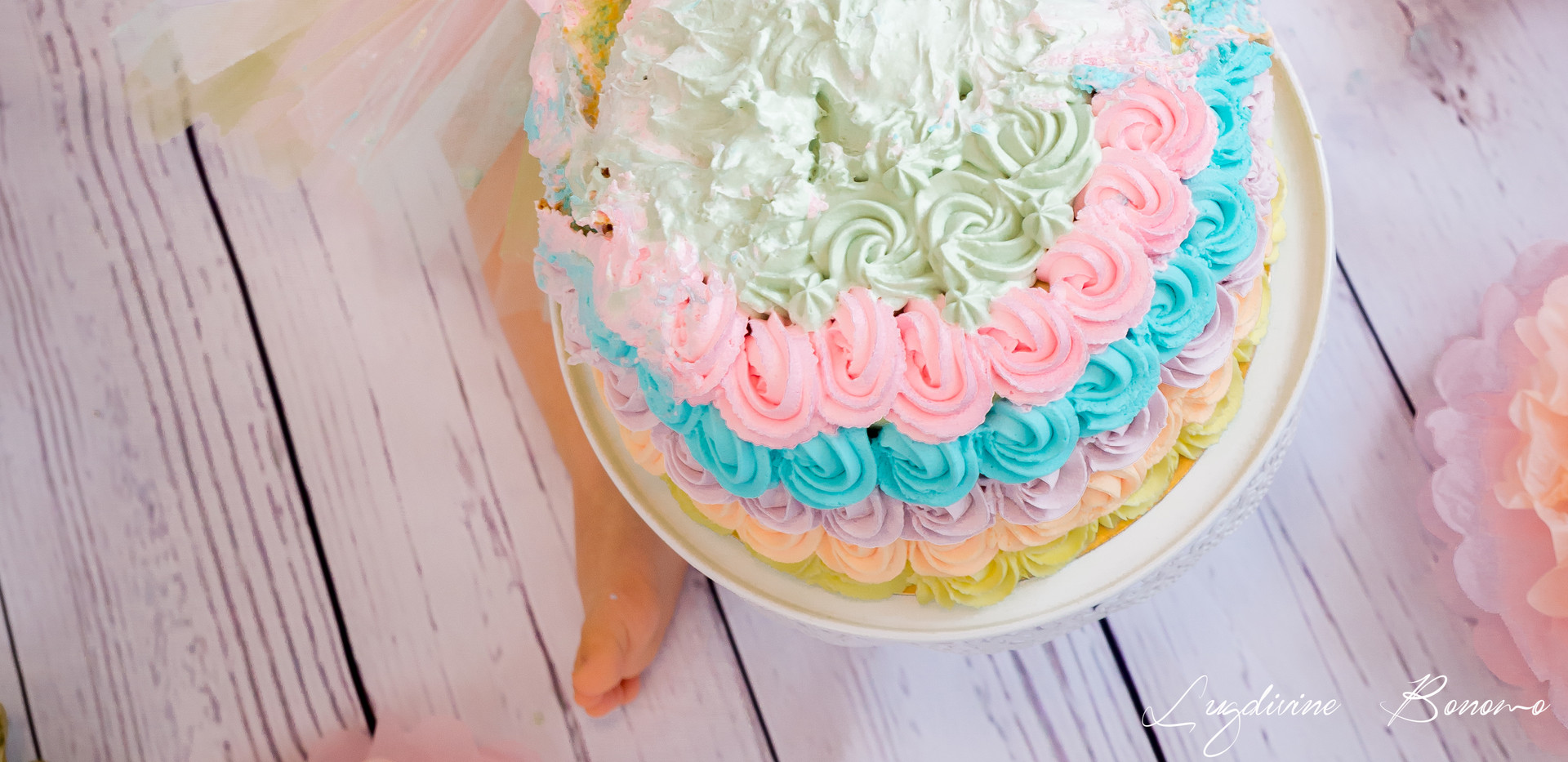 smash the cake photographe lambesc