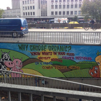 Organic grafity