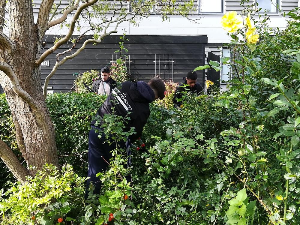 FRAK ordner haver i Urbanplanen