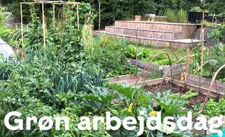 Kom med til grøn arbejdsdag i Hørgårdens Byhave