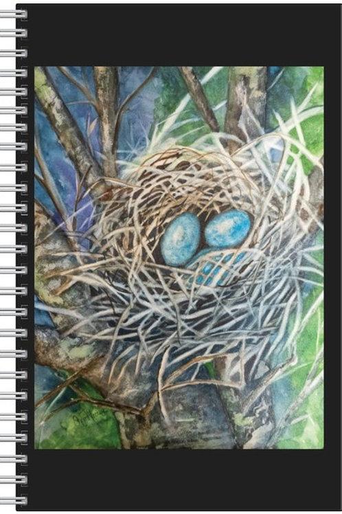 Robin Eggs Journal