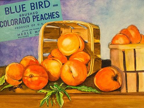 Colorado Peaches Card Flat