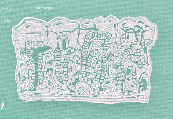 Teeth Print on Teal Paper