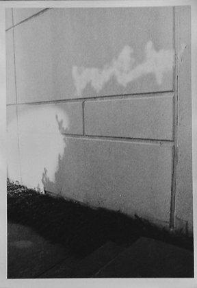 Light Shadow Wall (MATTE)