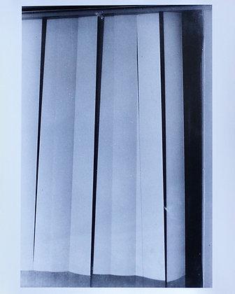 Silver Gelatin Print Shades